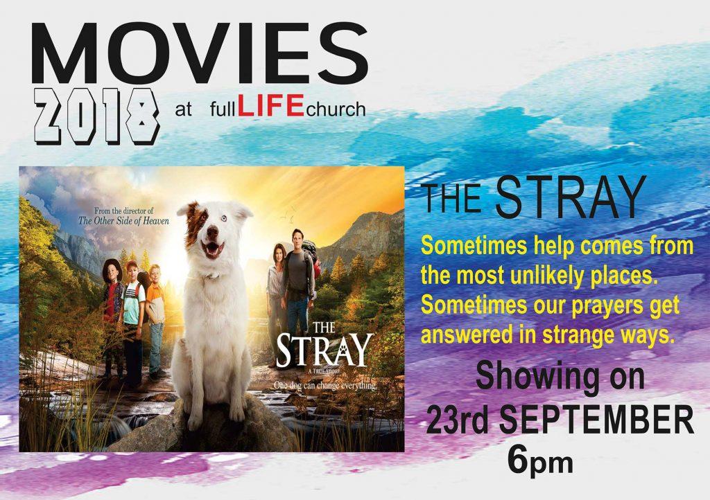 The Stray Movie